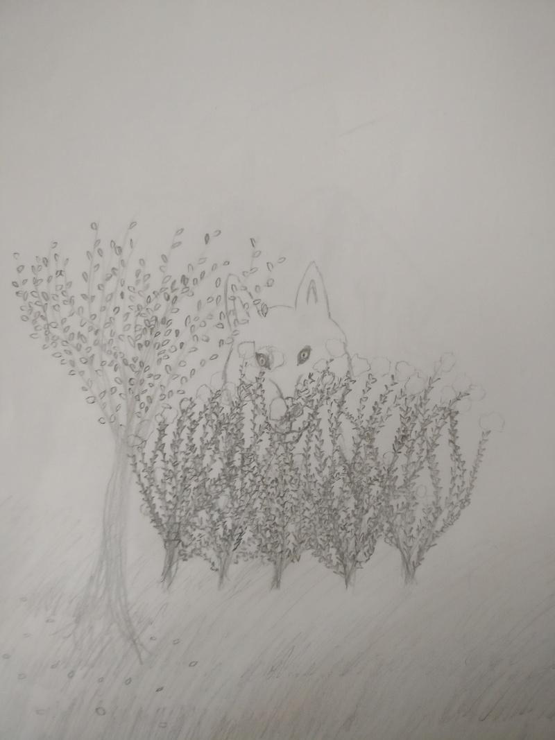 Meine Bemühungen zum Malen/Zeichnen :D Busch_11