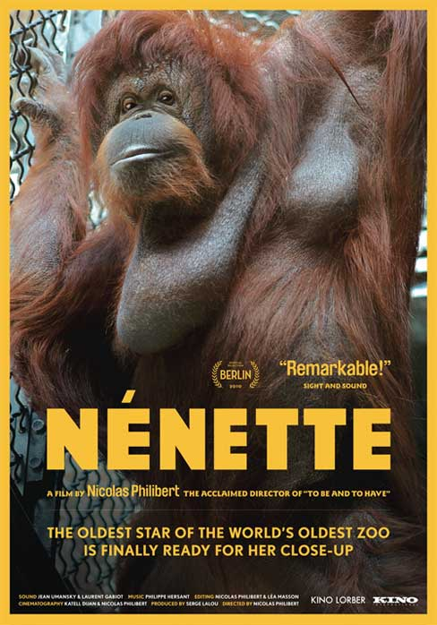 Ne jamais sortir sans nénette - Page 2 Nenett10
