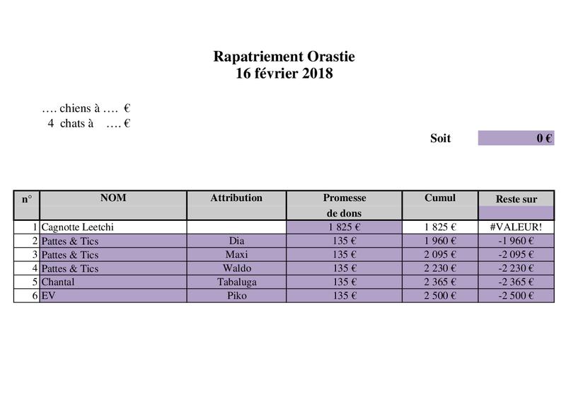 TRANSPORT CAMION ROUMANIE arrivée le 17 FEVRIER 2018 Rapatr78