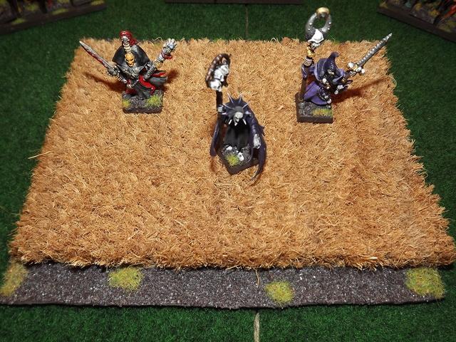 Choix des Armes, Gratzull (Conclaves vampiriques) Dscf6224