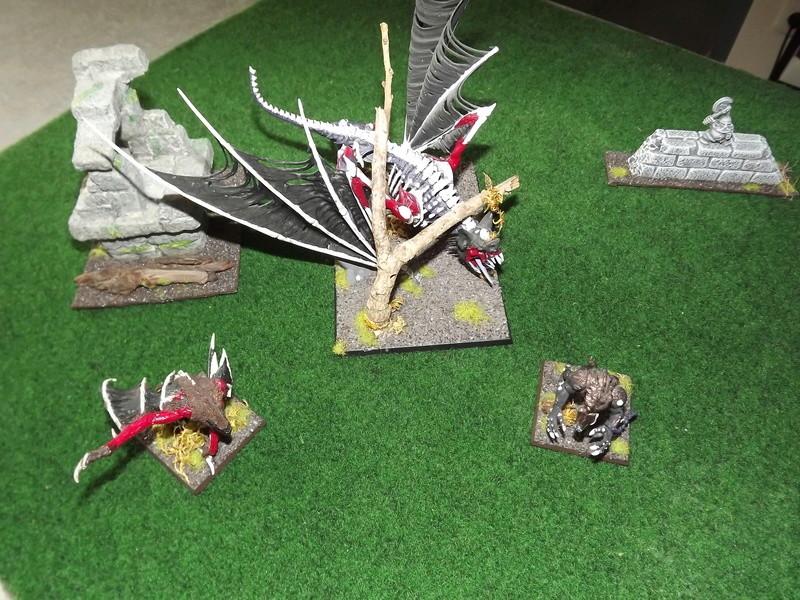 Choix des Armes, Gratzull (Conclaves vampiriques) Dscf6312