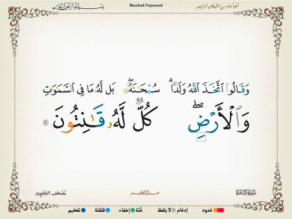 الآية 116 من سورة البقرة الكريمة المباركة Oa_11610