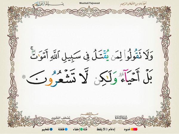 الآية 154 من سورة البقرة الكريمة المباركة Oa_15410