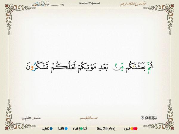 الآية 56 من سورة البقرة الكريمة المباركة Oa_56_10
