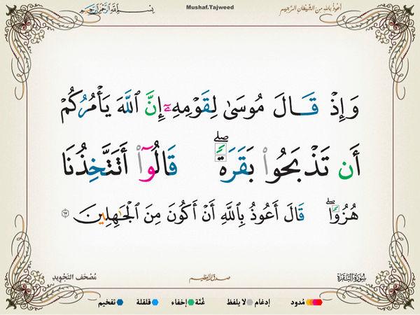 الآية 67 من سورة البقرة الكريمة المباركة Oa_67_10