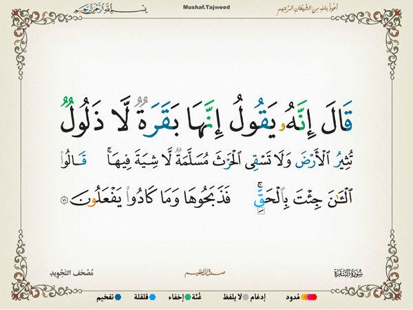 الآية 71 من سورة البقرة الكريمة المباركة Oa_71_10