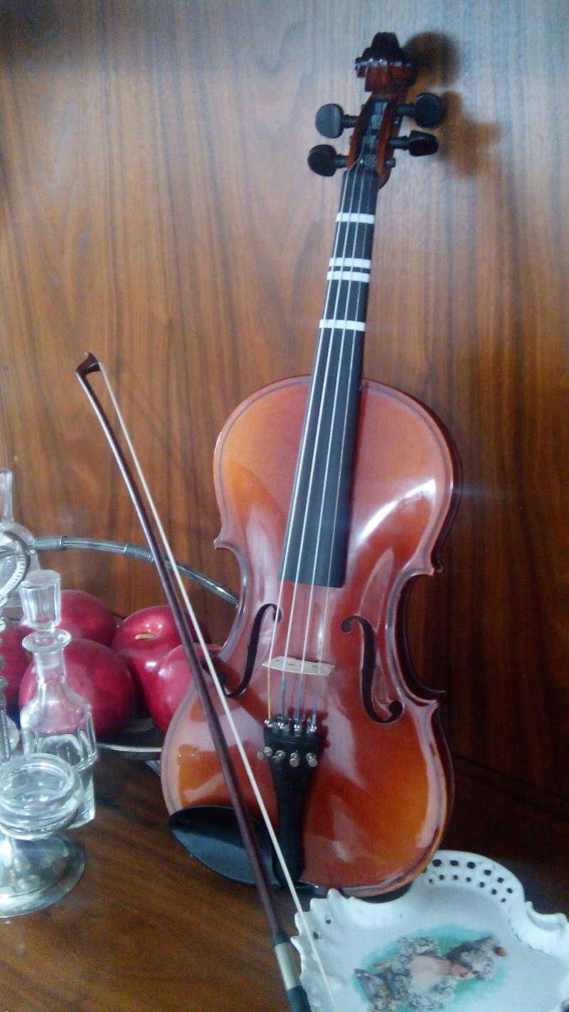 Recomendaciones de música para piano y violín solista - Página 4 Viora_10
