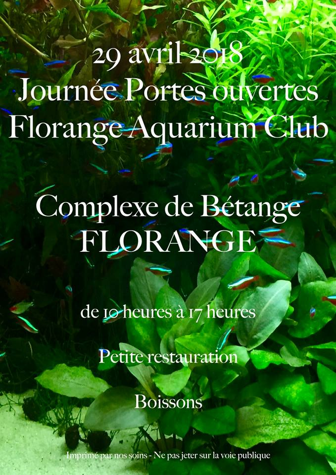 Portes ouvertes - Florange Aquarium Club (57) - 29 avril 2018 28168511