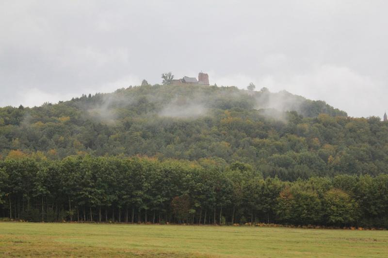 Pour GERARD / Territoire de chasse en Alsace Img_2010