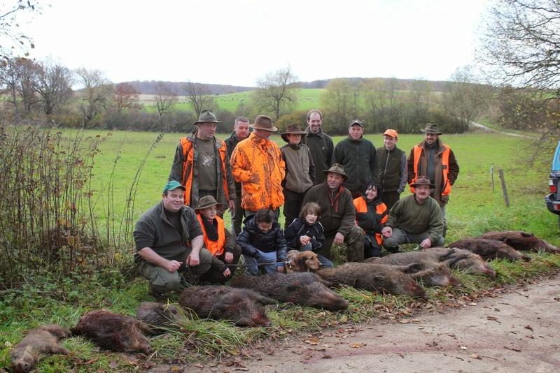 Pour GERARD / Territoire de chasse en Alsace - Page 2 Img_2311