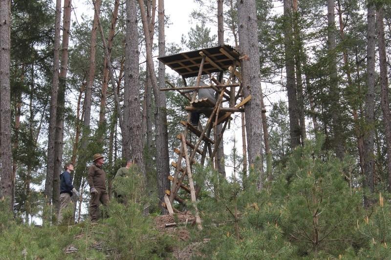 Pour GERARD / Territoire de chasse en Alsace Img_2511