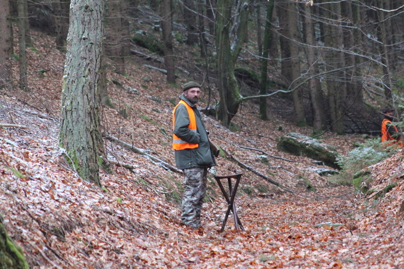 Pour GERARD / Territoire de chasse en Alsace - Page 4 Img_2910