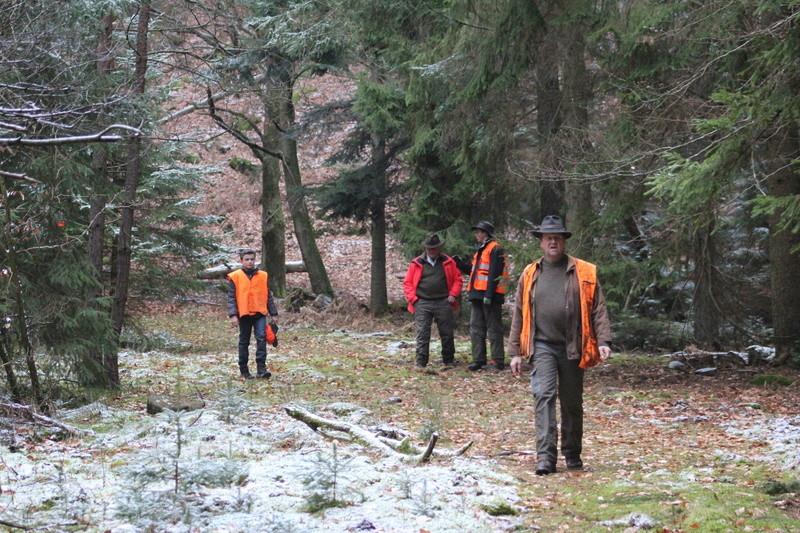 Pour GERARD / Territoire de chasse en Alsace - Page 4 Img_2915