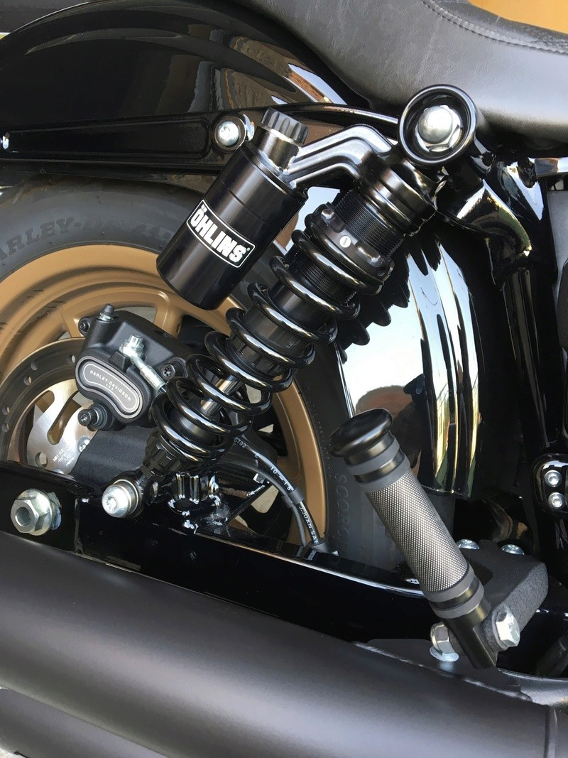 Ohlins HD 763 sur Low rider S Img_3016