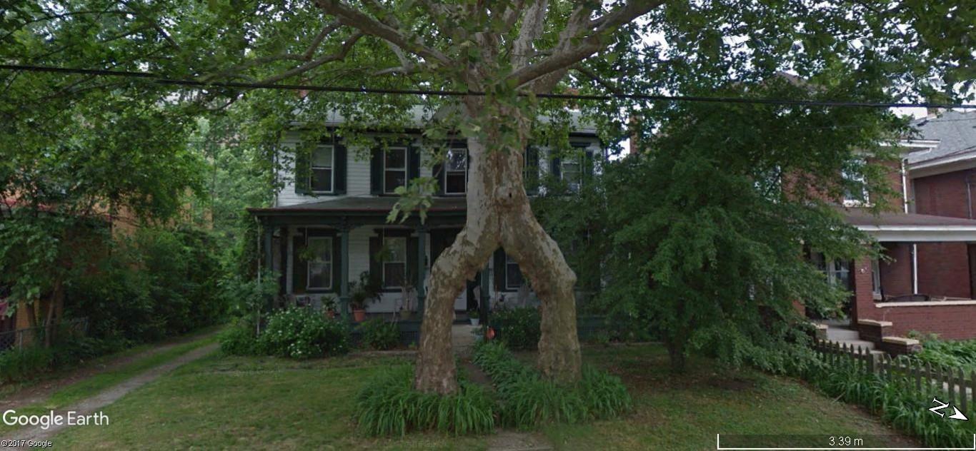 STREET VIEW: L'entrée est ici,entre les jambes de l'arbre,  Pittsburgh, USA A140