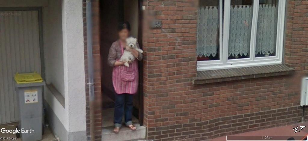 STREET VIEW: La dame au petit chien, Calais A552
