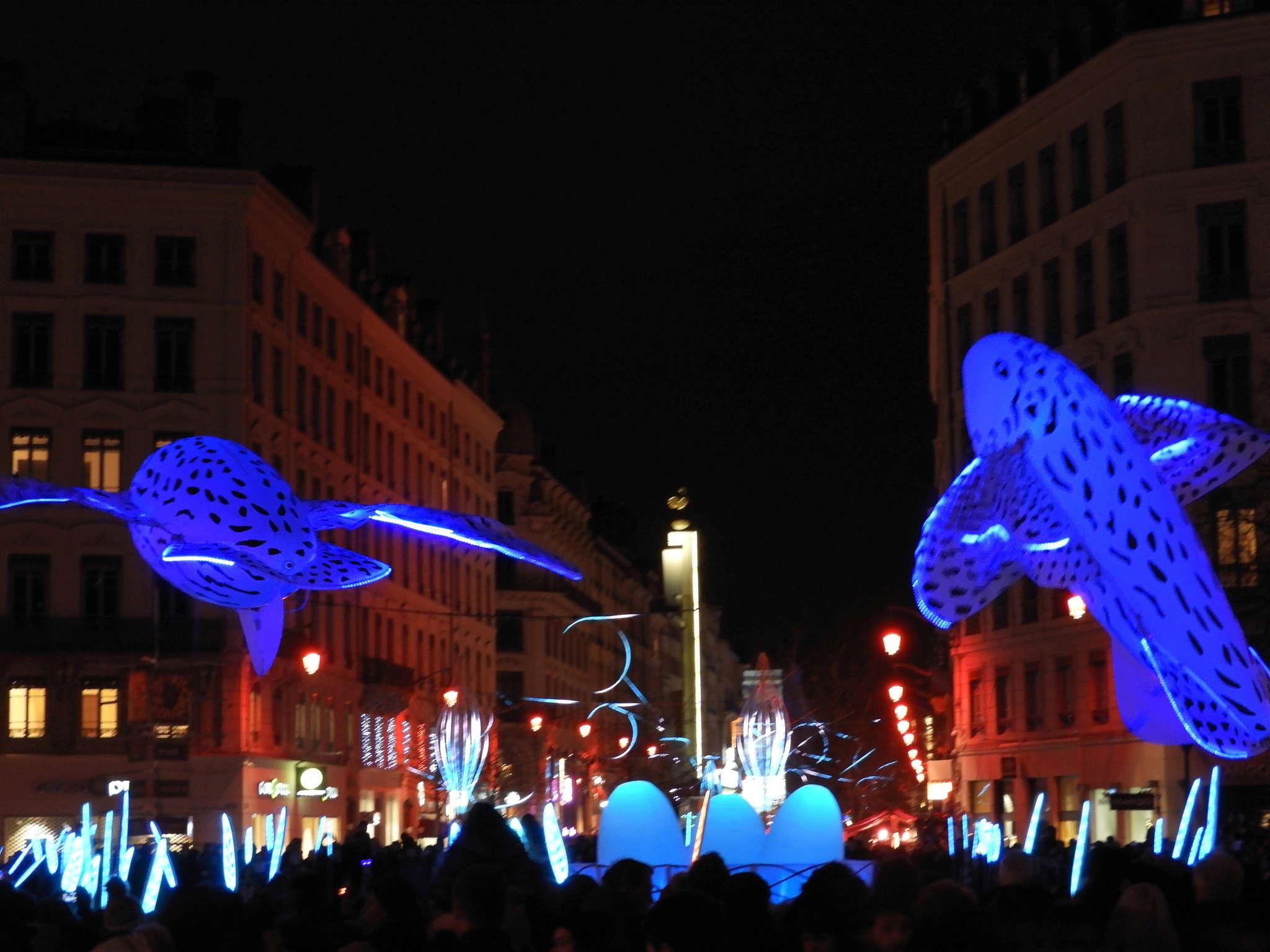 la fête des lumières: un 8 décembre multicolore à LYON  Dscn2216