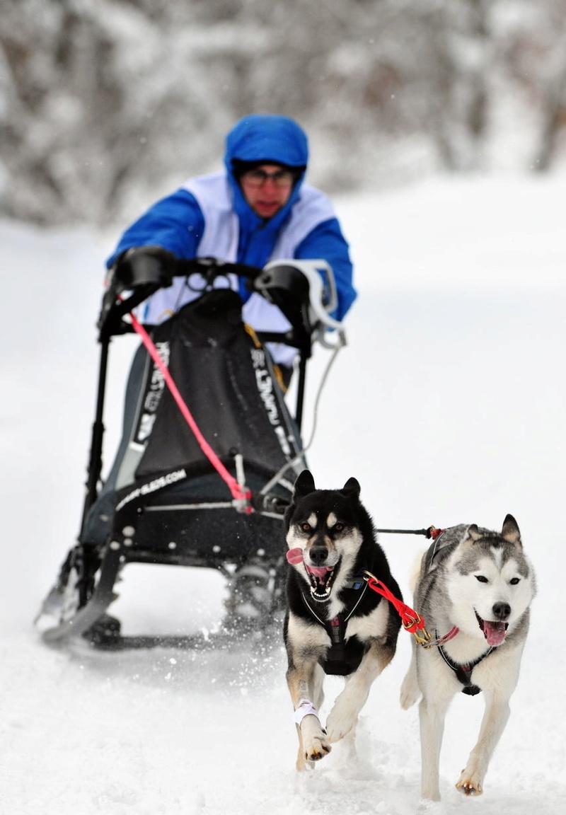 Course de chiens de traîneau au Lac Blanc Lac_bl11