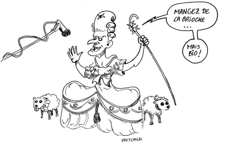 politique - Marie-Antoinette dans la politique actuelle - Page 33 29-nov10