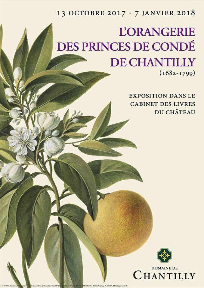 L'Orangerie des Princes de Condé de Chantilly Versai10