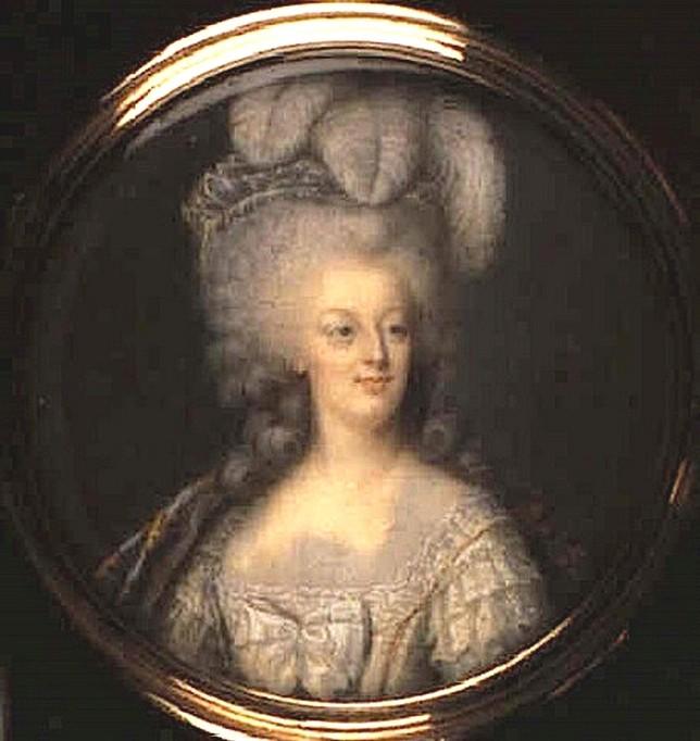 Portrait de la Reine Marie-Antoinette par Joseph Boze - Page 4 Zzz11010