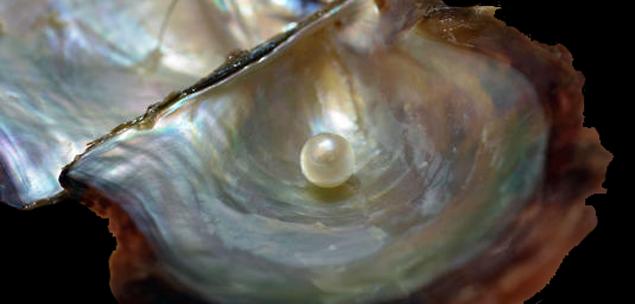 Les Artéfacts sacrés celtiques Perle11