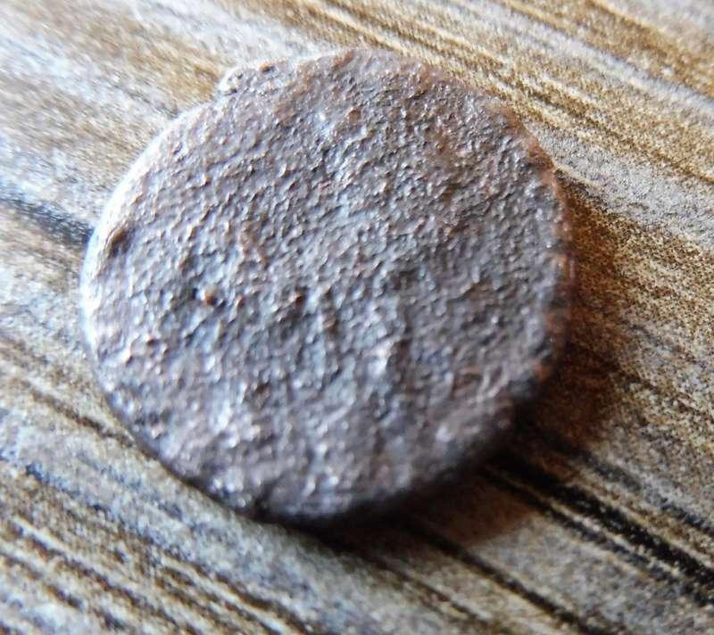 Petite romaine 1210