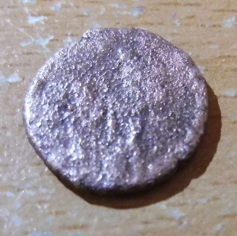 Petite romaine P1030110