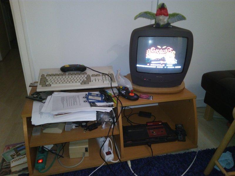 Faut-il faire rénover sa Master System préventivement ? Img_2010