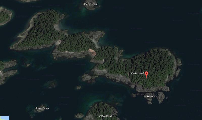 Visage expressif sur lîle Reeks - Parc Pacific Rim - Canada 00a10
