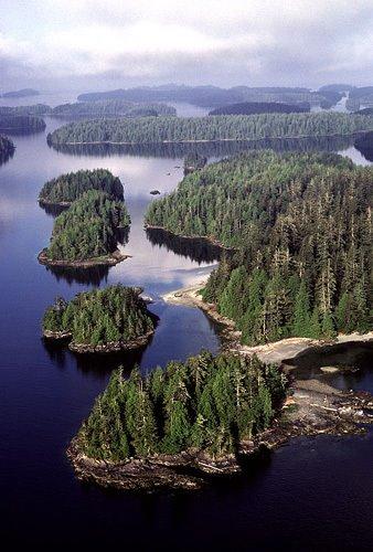 Visage expressif sur lîle Reeks - Parc Pacific Rim - Canada 00b10