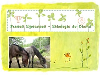 Passion Equitation - Cheval - Ethologie
