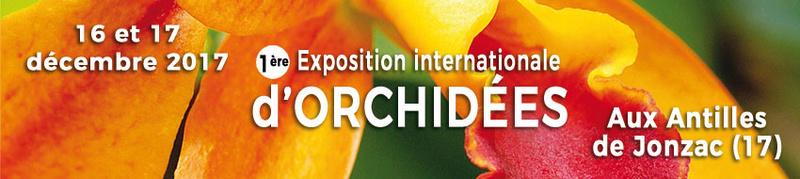 1ere exposition internationale en CHARENTE MARITIME  Décembre 2017 Bandea11