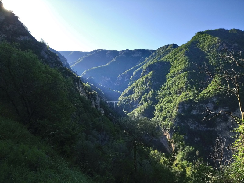 Sortie jeudi 24,à l'assaut du mont Viroulet Dsc_0641