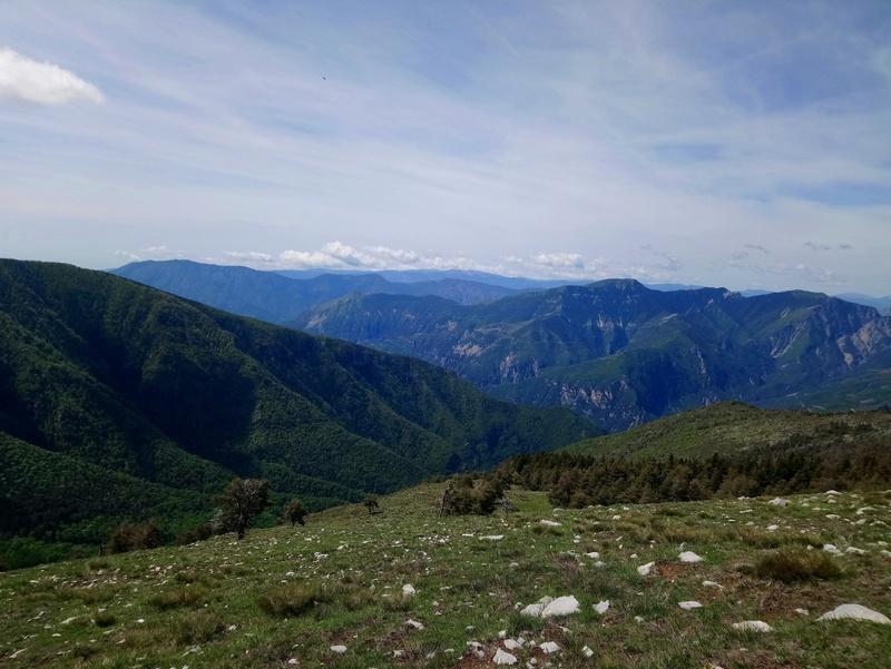 Sortie jeudi 24,à l'assaut du mont Viroulet Dsc_0642