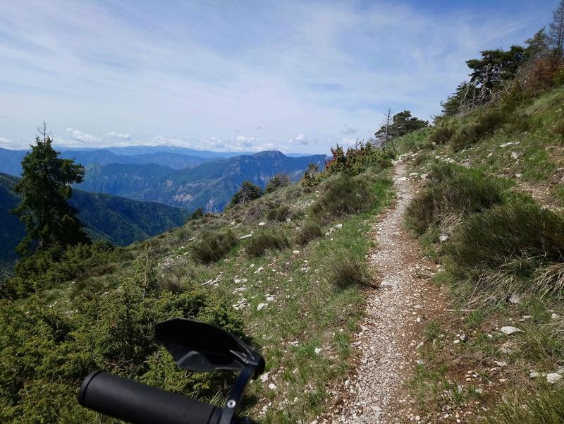Sortie jeudi 24,à l'assaut du mont Viroulet Dsc_0646