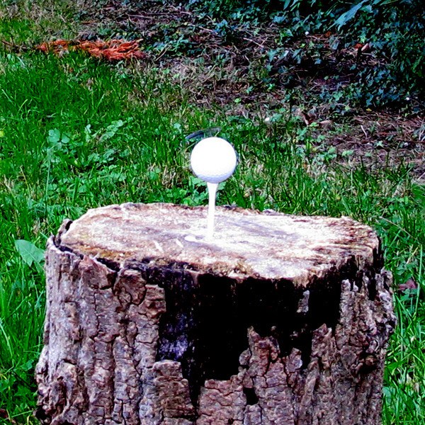 Plinking sur balles de golf Golf_410
