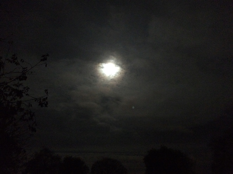 The Full Moon - Page 10 E9c30e10