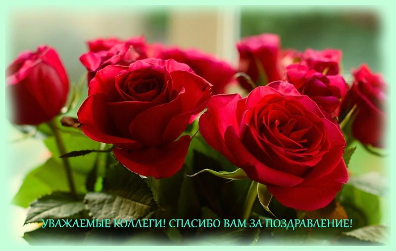 Поздравляем Татьяну Николаевну Долгову с Днём Рождения! Yiyui10