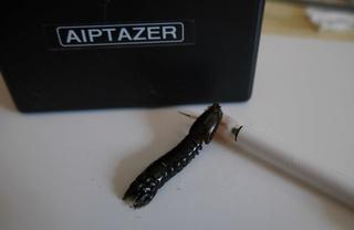 Squille neutralisée par Aiptazer Squill13