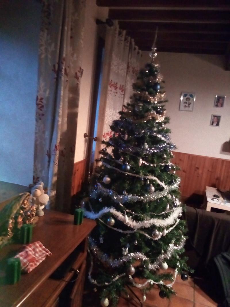 Noël 2017 Img_2010