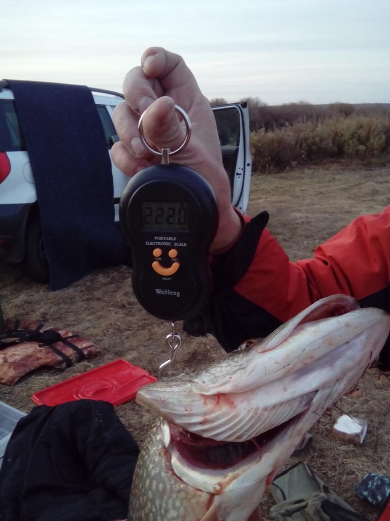 Отчёты о рыбалках - Страница 32 Image10