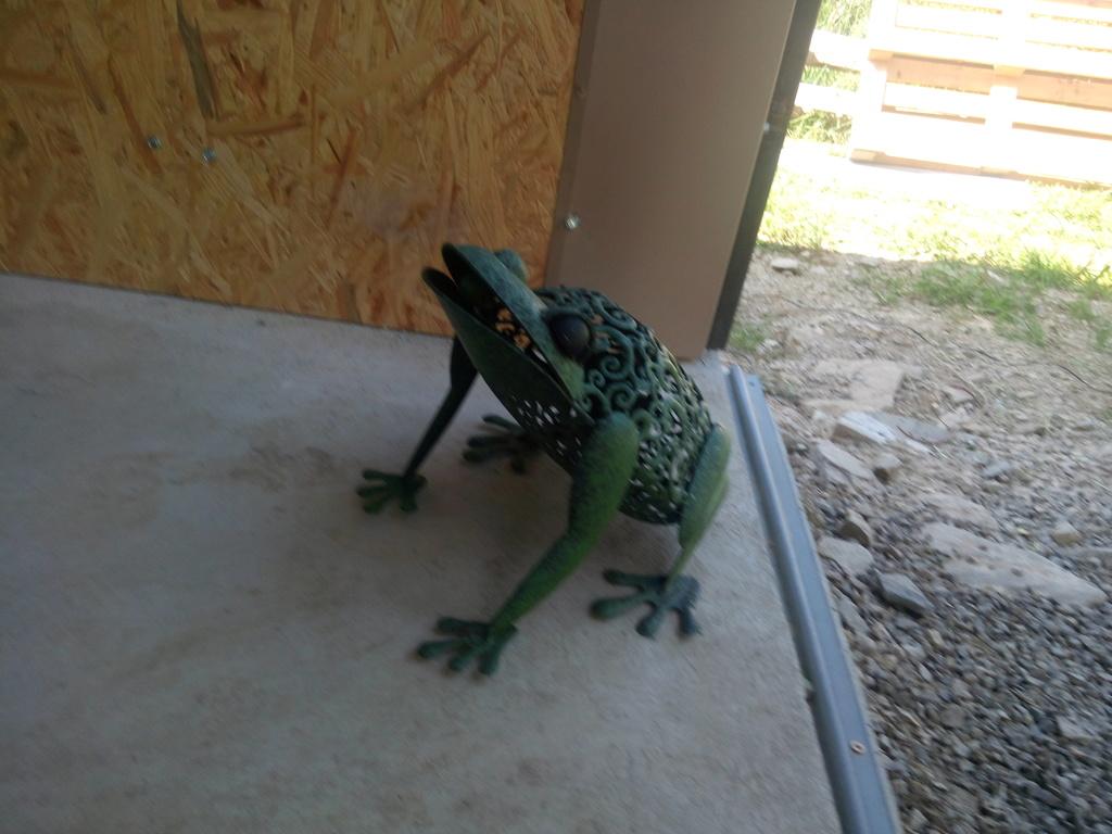Le Musée des grenouilles SIMAR vient d'ouvrir en Aveyron ! Img_2372