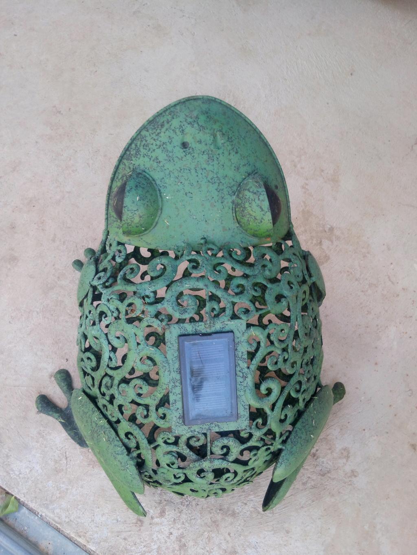 Le Musée des grenouilles SIMAR vient d'ouvrir en Aveyron ! Img_2373