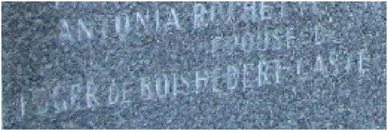 Qui était le comte Roger de Boishébert de Gasté? Dytail10