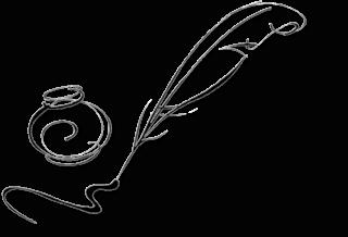 IVY (Tome 1 à 3) de Aïvy Frog - SAGA Feathe24