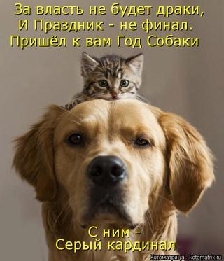 Черный юмор Kotoma10