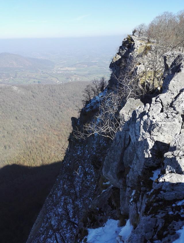 Sortie Trail à Arbas, dimanche 25 février 2018 Img_2015