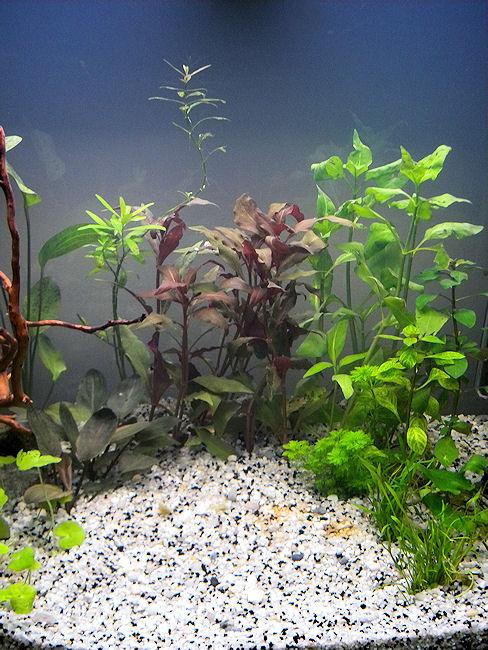 Lancement d'un Fluvial 150 Aquari12