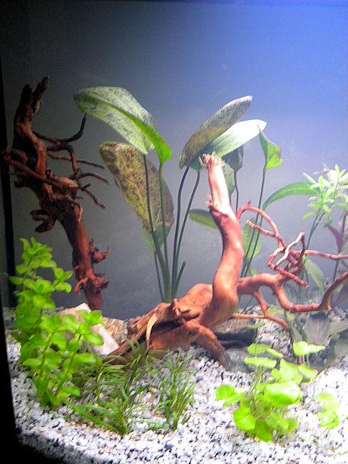 Lancement d'un Fluvial 150 Aquari18